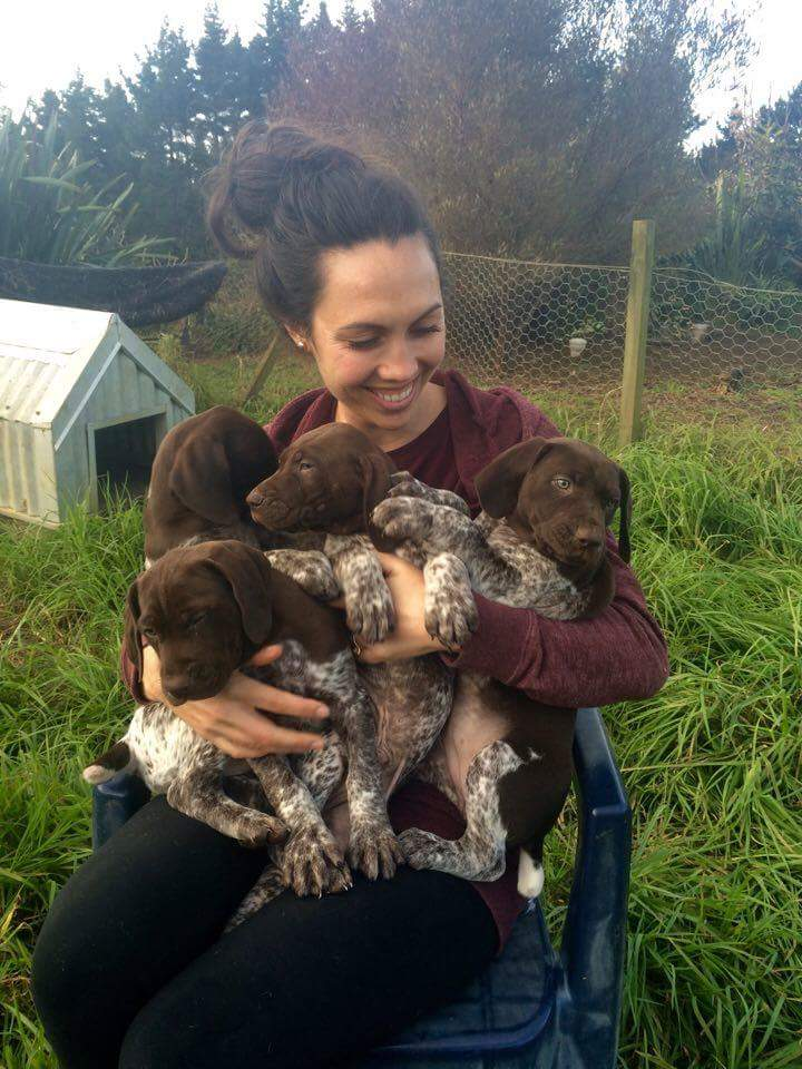 Holly with a handful of 4 week old puppies