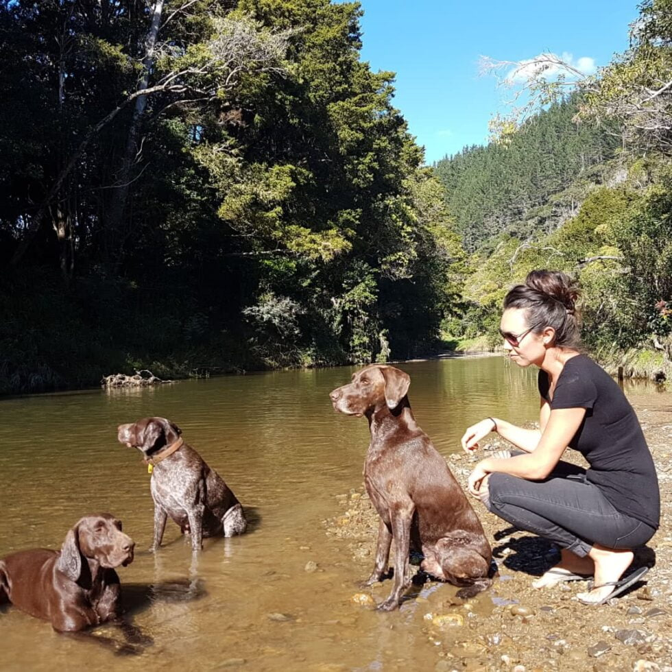Amber & Pippi (Sisters) & Max enjoying the river with Holly