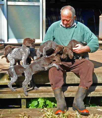 Jim with 5-6 week old puppies ready for field testing