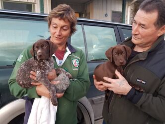 Collecting their new puppy