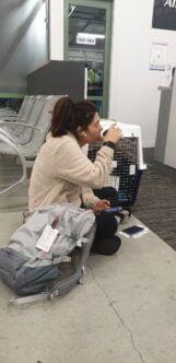 Makalanipina at Kerikeri airport taking her puppy to Hawaii