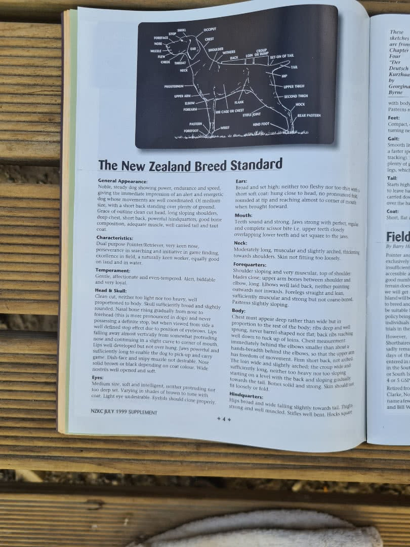 NZ breed standard ask for a copy